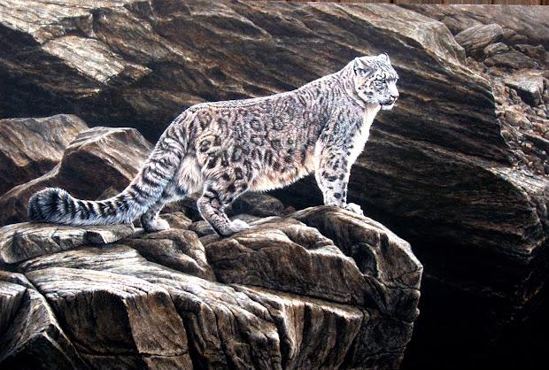 Alan Hunt Wildlife Artist Original Paintings
