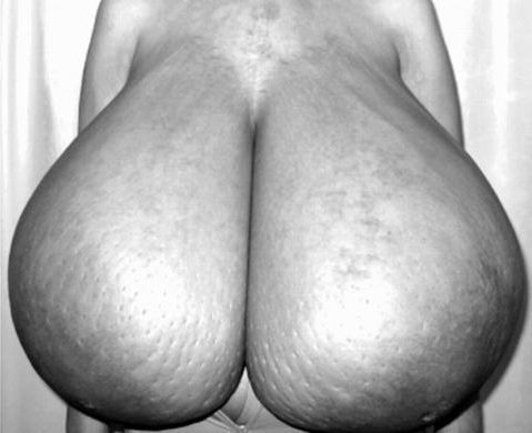 big hips hentai