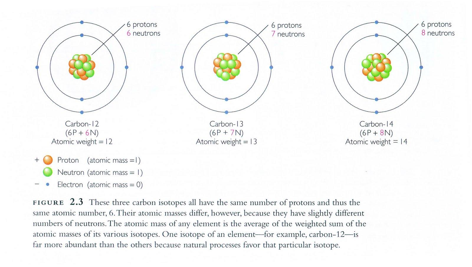 Carbon 14 dating vs potassium argon calculator 2