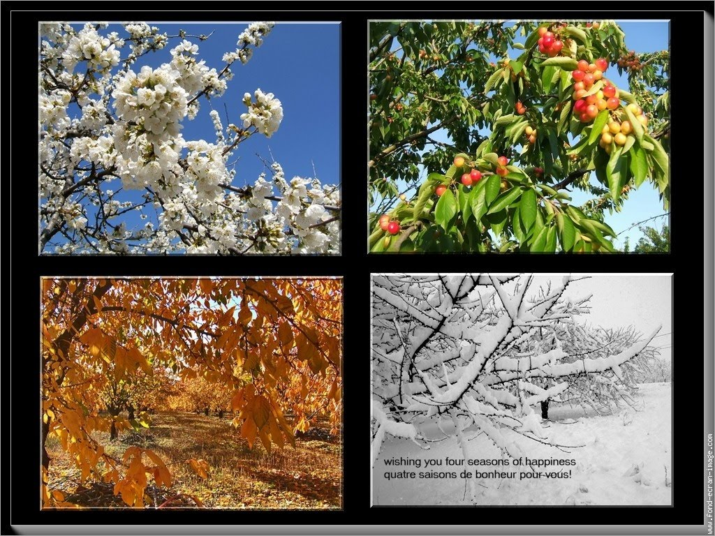 GalliaWatch: Four Seasons Of Health And Happiness To All