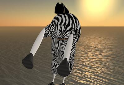Zebra Fly