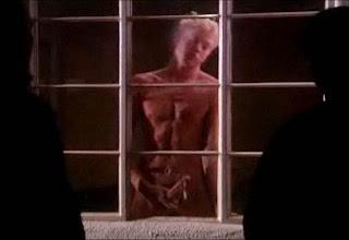 Window wanking