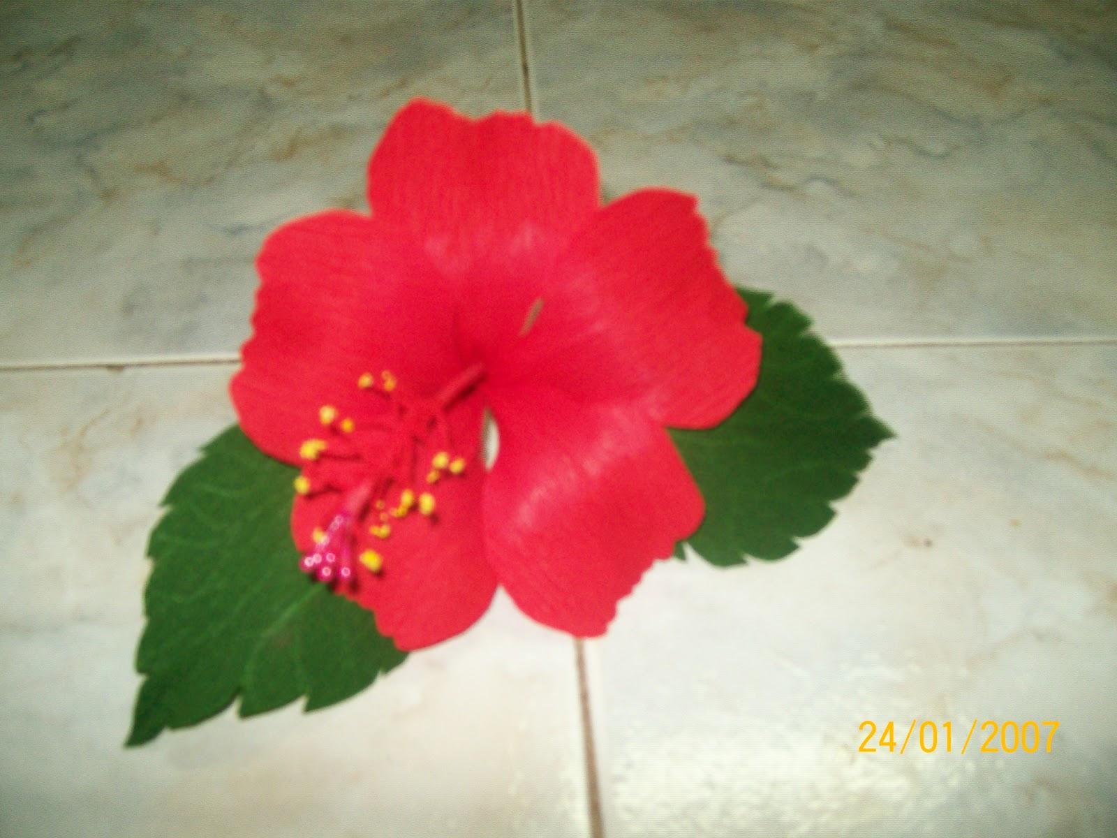 Tinas Creations Paper Hibiscus Shoe Flower