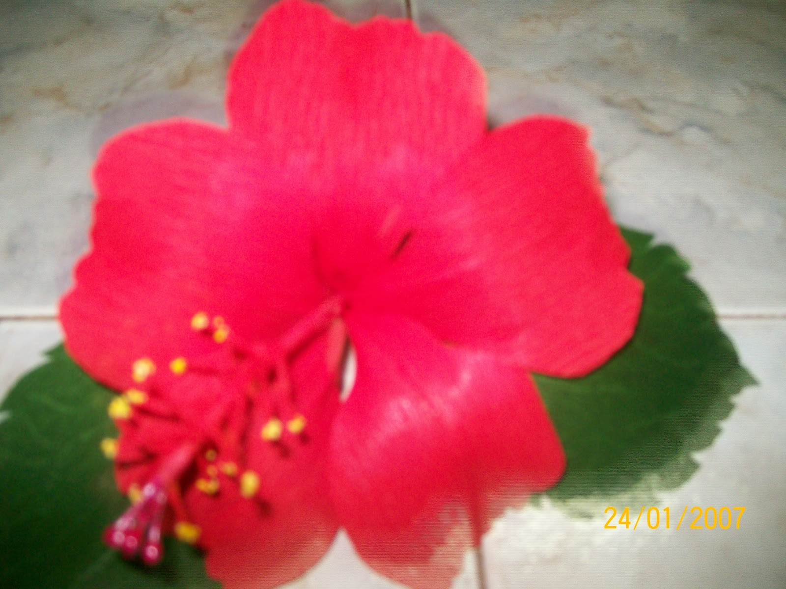 How To Make A Hibiscus Flower Out Of Paper