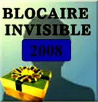 Blocaire invisible 2008