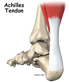 Ejercicios estiramiento tendón Aquiles rendimiento osteon Alaquas centro de fisioterapia Valencia Carlos López Cubas