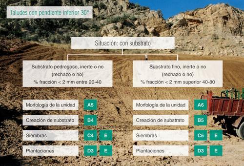 Manual para la restauración de canteras de roca caliza - Ejemplo