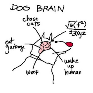 A Whiter Shade of Eskie: Dog Psychology 101