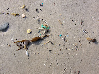 Plastic fragments from fishing boat junk on South Cape Bay Beach - 15th August 2008
