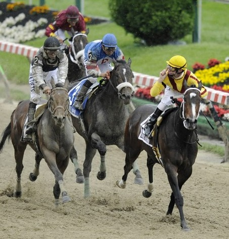 Where Awesome Happens: Horse Racing
