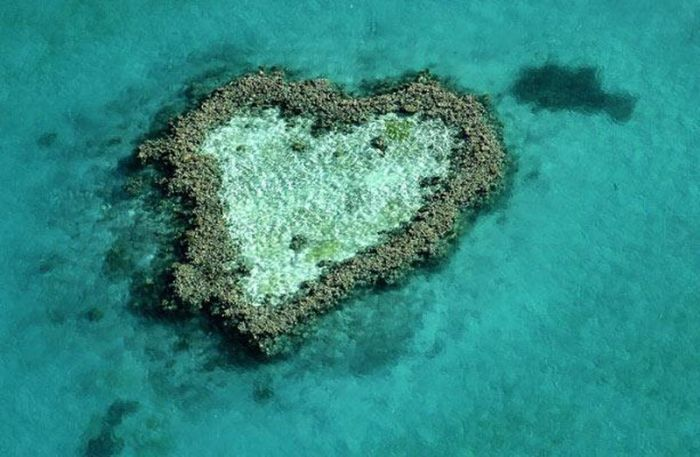 11 Awesome hearts in nature