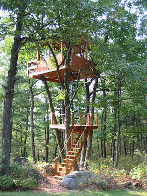 The Spiral Stair Blog Unbelievable Custom Tree House   Spiral Staircase Around Tree Trunk   Treehouse Masters   Ter Kulve   Canopystair   Robert Mcintyre   Wooden Stairs