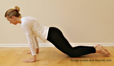 sacred rose yoga blog post op yoga diaries part i