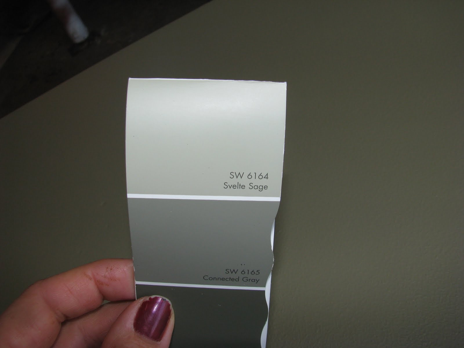 SherwinWilliams Paint Color Sage