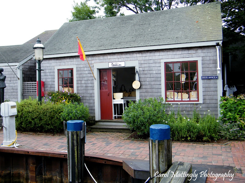 Carol Mattingly Photography: Cape Cod Trip 2010, Nantucket ...