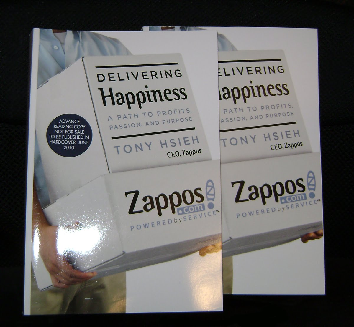 Delivering Happiness Book