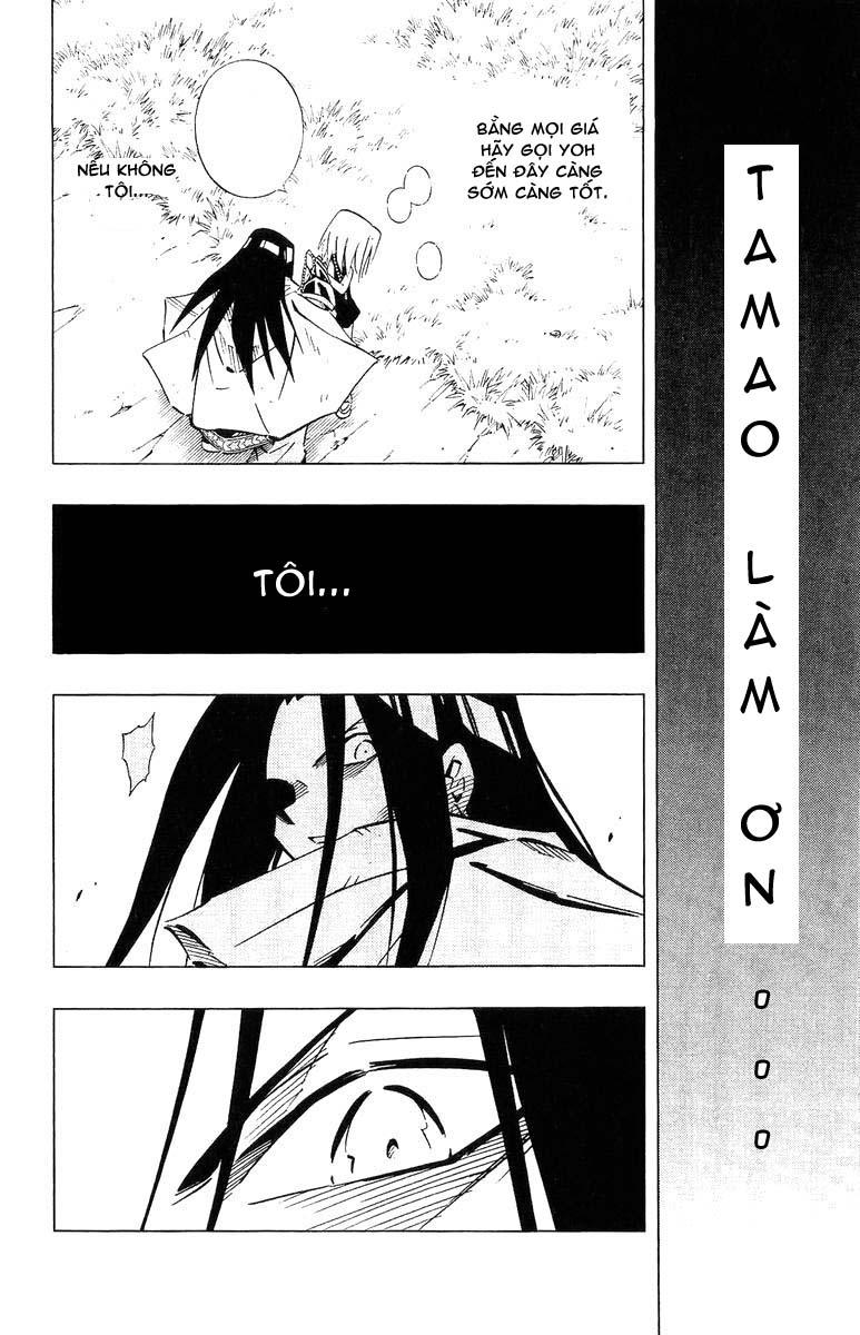 Shaman King [Vua pháp thuật] chap 245 trang 16