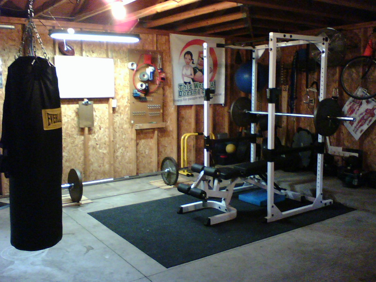 Lean To Shed Detail Shed Gym Ideas