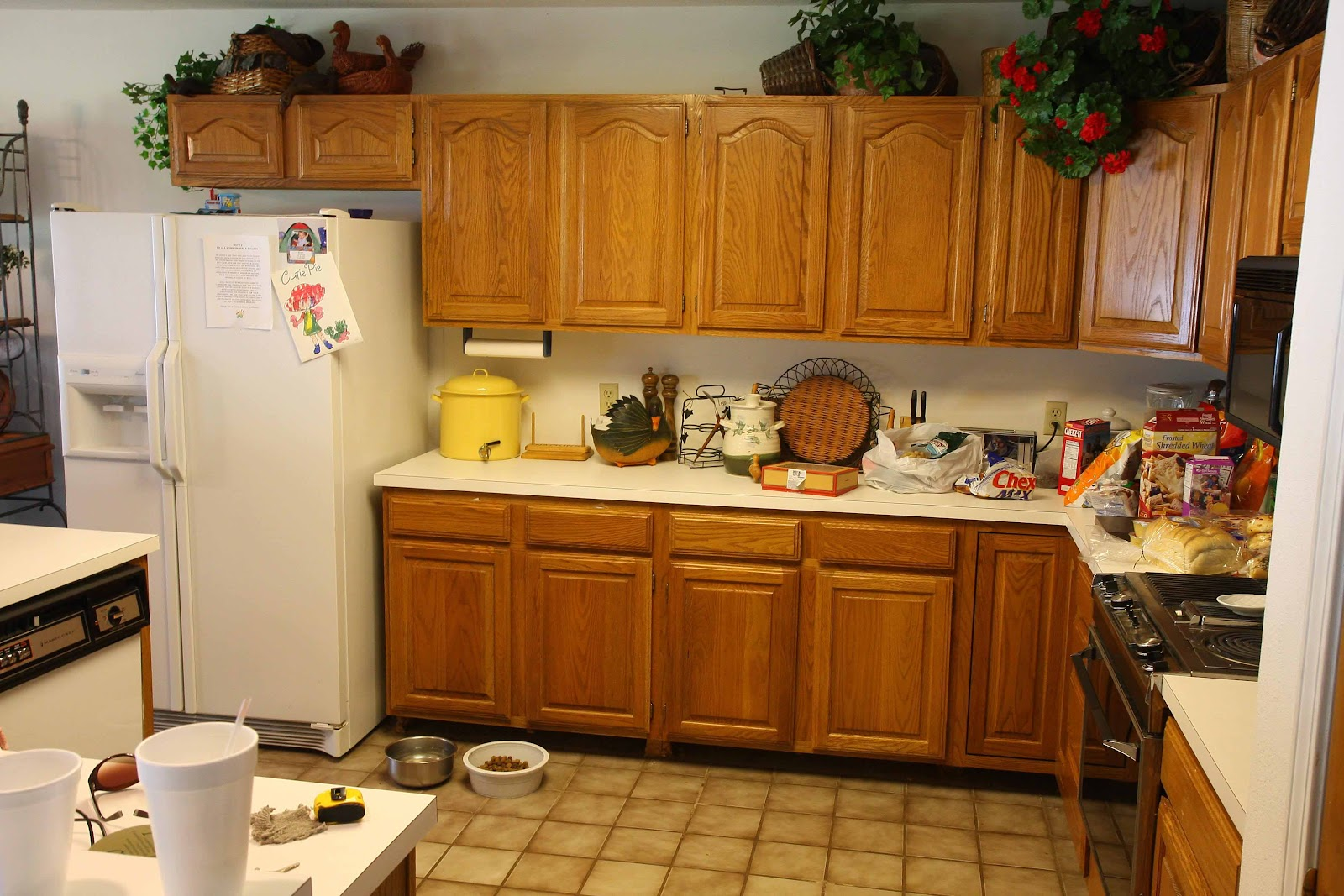 Rawdoors.net Blog: What is Kitchen Cabinet Refacing or