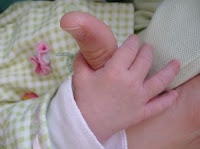 Image: Little hand: baby hand wrapped around adult thumb, by Lindsey Bergquist on freeimages.com