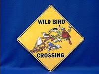 bird crossing signs