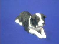 border collie figurine sandicast