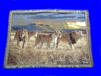 lion blanket throw lions pride
