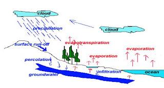 Siklus Hidrologi Mues Geografi