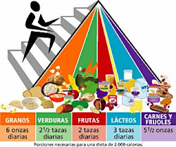 Dieta de las 5 comidas diarias