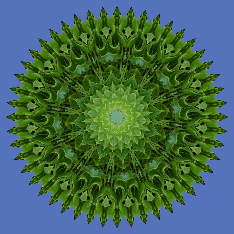 Brightlight Mandalas: 2010 Christmas Mandala