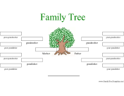 Children 39 s focus january 2011 for 11 generation family tree template