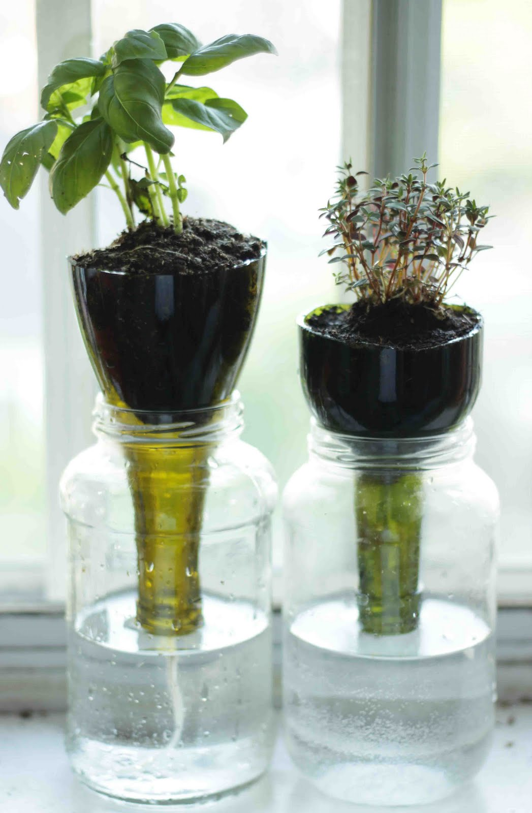 Make Self Watering Planters Little Projectiles Self Watering Glass Planters