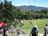 Cabalgata in Bajo Los Calvo