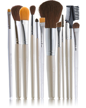 12 pc makeup brush set