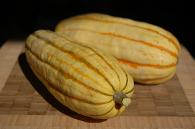 Photo of two delicata squash from the farmers' market.