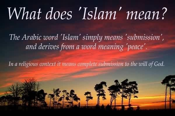 What does Islam mean ? | Your Title