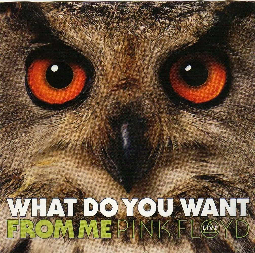 pink floyd what do you want from me