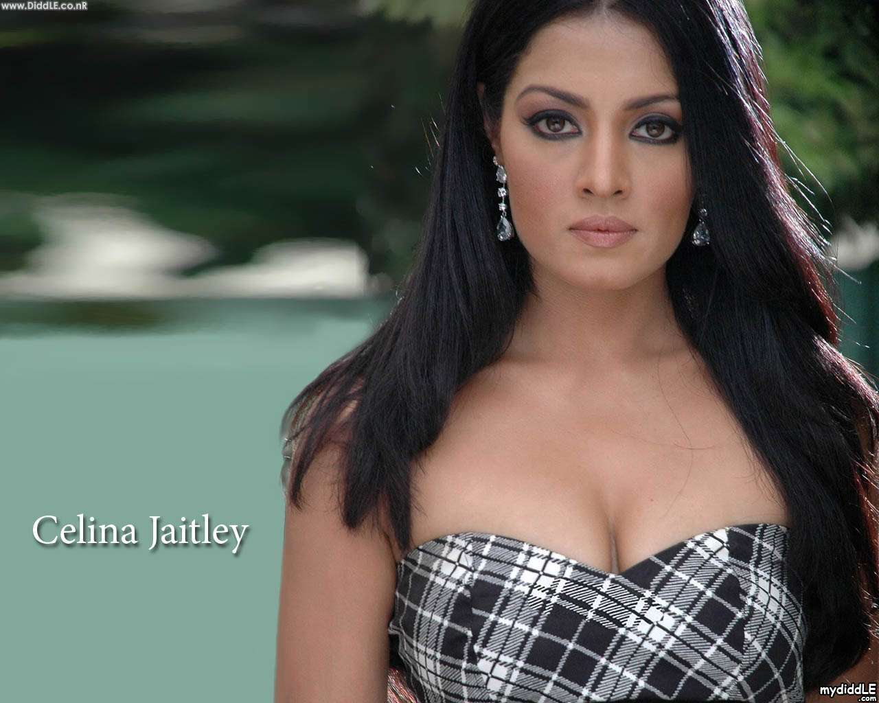 celina jaitly hot images