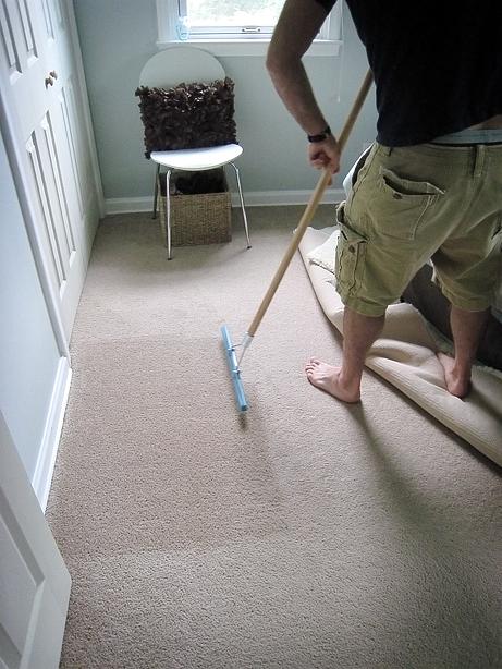This Fresh Fossil Home Maintenance Carpet Rakes