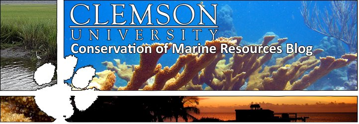 Conservation of Marine Resources