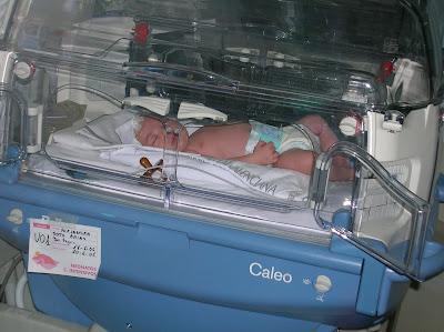 uci neonatos