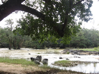 River Kabini flows through Kuruva Island, Wayanad