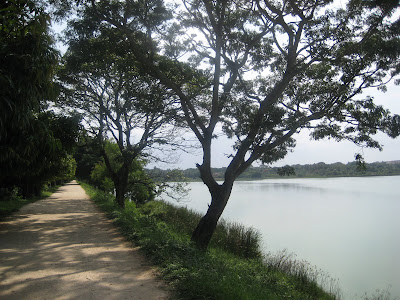 Kukkarahalli Lake Walk Way