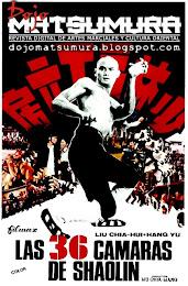Las 36 cámaras de Shaolin (1978) Descargar y ver Online Gratis