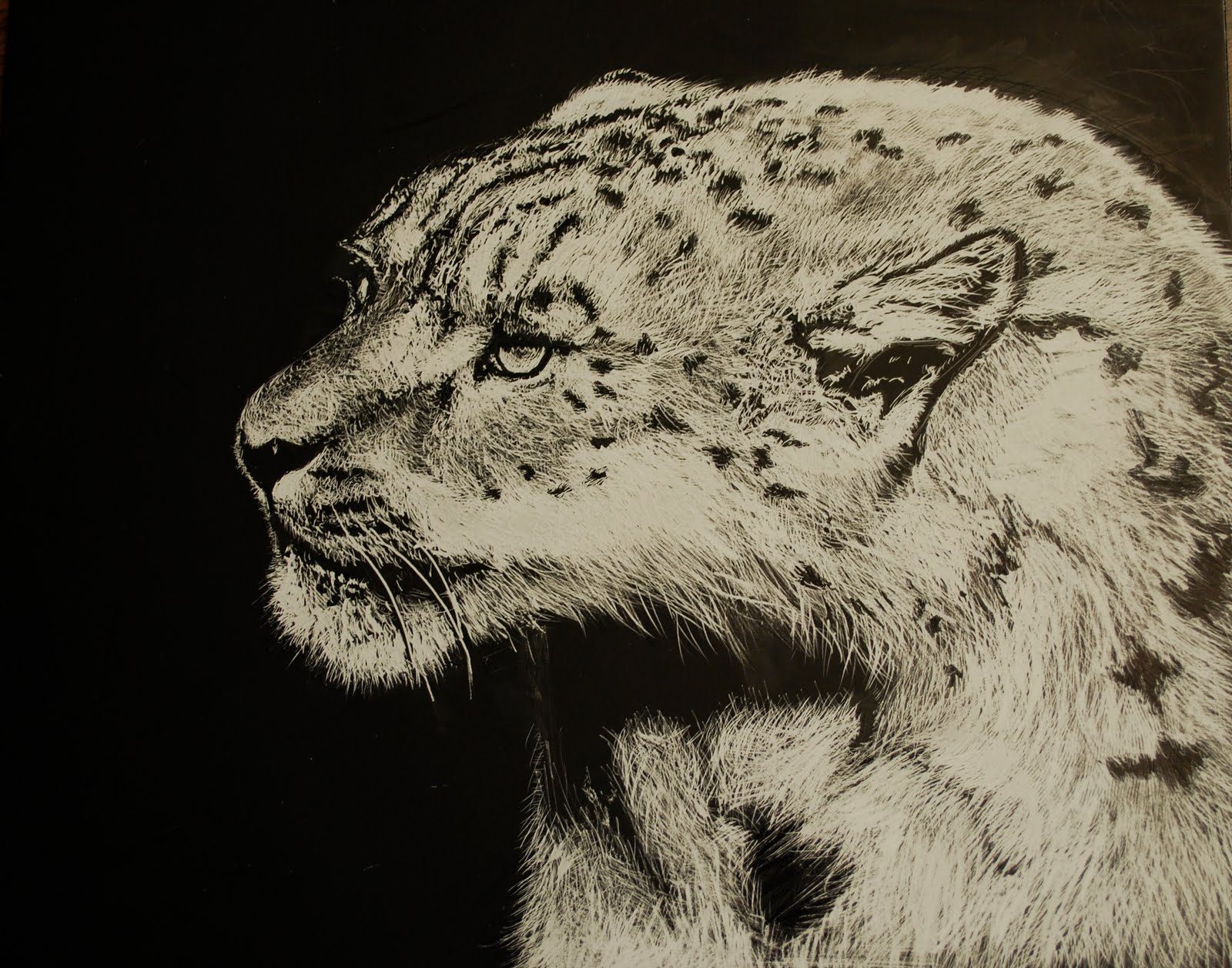 Project ART-A-DAY: Lesson 3: Scratchboard