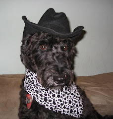 Bailey of the old west