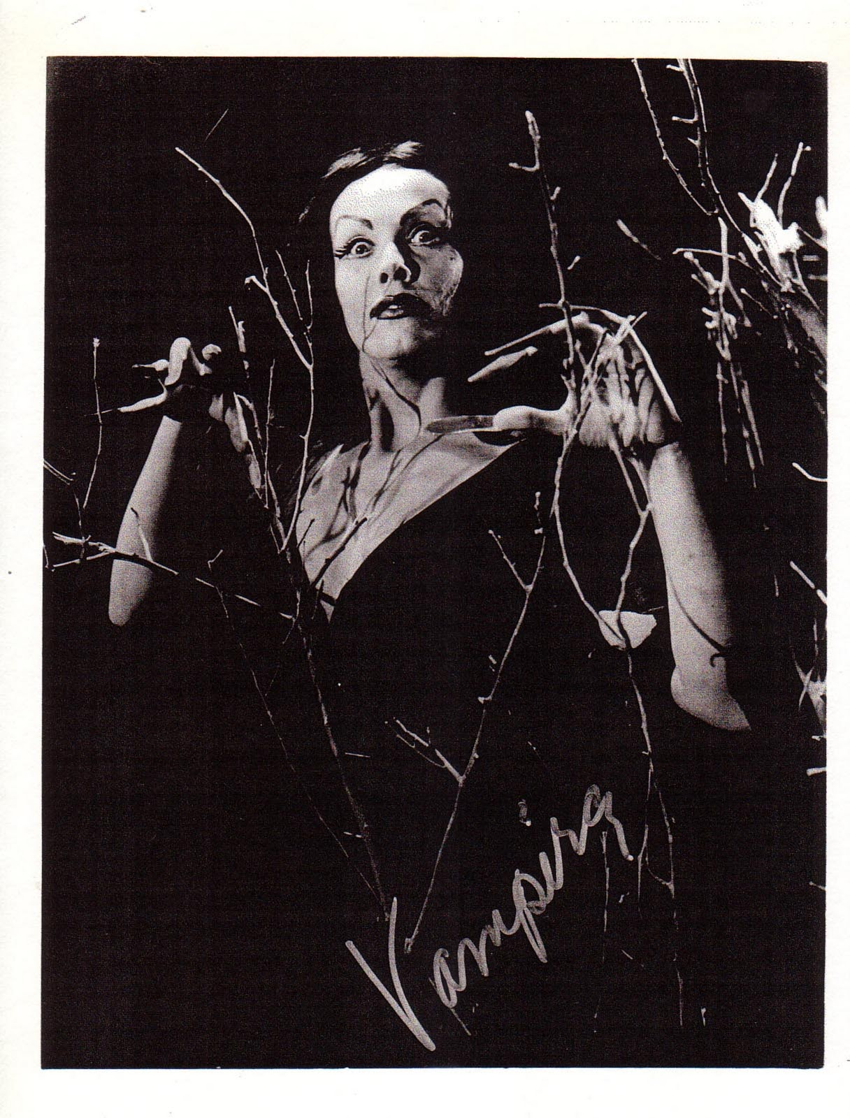 And Everything Else Too Signed Vampira