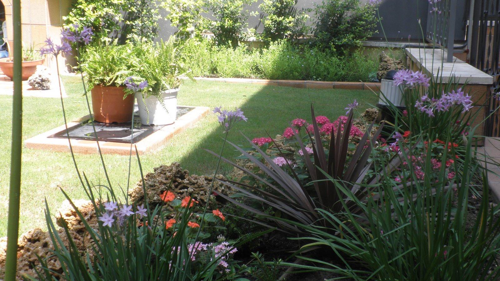 Jardinbio 09 13 10 - Plantas para arriates ...