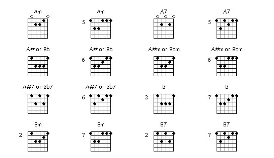 Professional Guitar World: Bar Chords