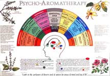 poster psyco AromaTherapy - Mechanism of olfactory memory